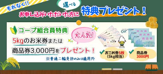 鹿島自動車学校のキャンペーン